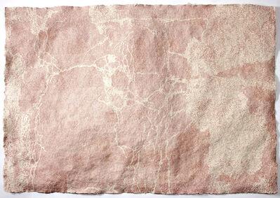Diane Samuels, 'Cracks on Sampsonia (K)', 2010