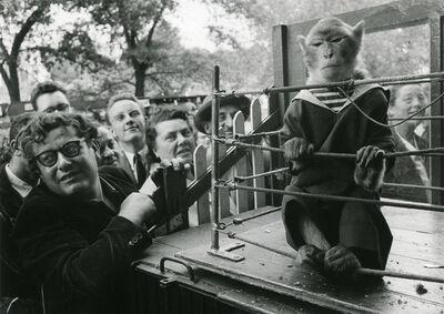 Robert Doisneau, 'Les Animaux Superieurs', 1954