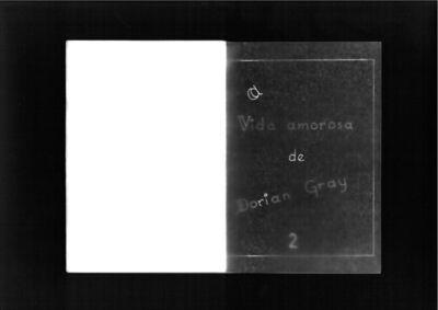 Sophie Nys, 'A Vida Amorosa de Dorian Gray 2', 2011