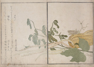 Kitagawa Utamaro, 'Cone-headed Grasshopper and Praying Mantis', 1788