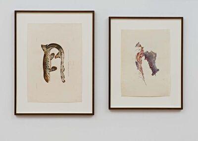 Anri Sala, 'Untitled (Rousette Malaisienne/Croatia)', 2018