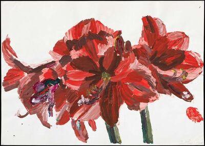 Inge Ellegaard, 'Amaryllis (12)', 1993