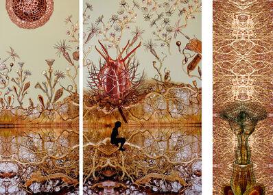 Sonia Mehra Chawla, 'Embryonic Plant: Hyperbloom', 2013