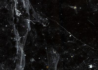 Per Bak Jensen, 'Spindelvæv / Spiders Web', 2018