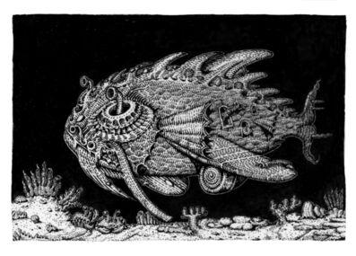David Welker, 'Lens Fish', 2019