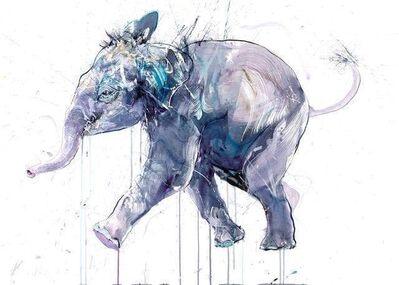 Dave White, 'Young Elephant I', ca. 2020