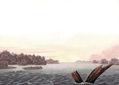 Adam Mysock, 'What's Left (after: John James Audobon's print of the Florida Cormorant) ', 2015