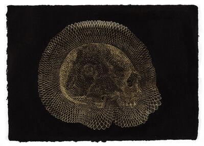 Walter Oltmann, 'Skull', 2013