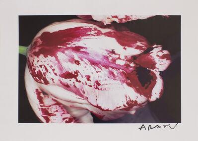 Nobuyoshi Araki, 'Painting Flower', Unknown