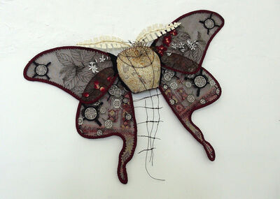 Johanne Allard, 'Qamariya Moth (Yemen)', 2015