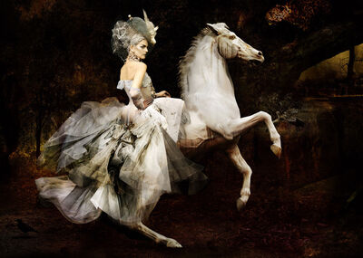 Simon Procter, 'Dior, The Rider', 2007