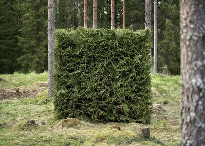 Antti Laitinen, 'Forest (Green)', 2016