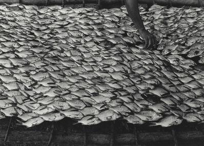Graciela Iturbide, 'Pescaditos de Oaxaca, Oaxaca', 1992