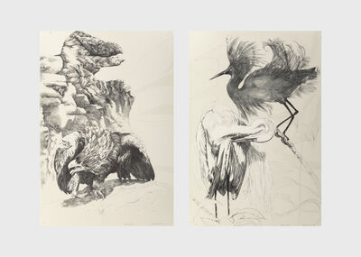 Ellen Lanyon, 'Eagle Beak and Black Egret (two works)', 1985