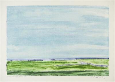 Jane McNichol, 'Saltwater Meadow', 2001