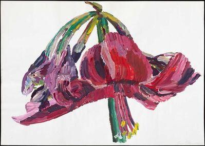 Inge Ellegaard, 'Amaryllis (P5)', 1993