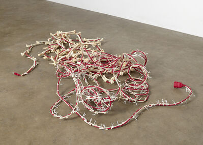 Nancy Lupo, 'Coyote Cord', 2015