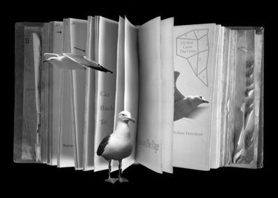 Olivia Parker, 'A Book of Broken Rules', 1994