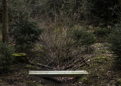 Per Bak Jensen, 'Overgang / Crossing', 2019