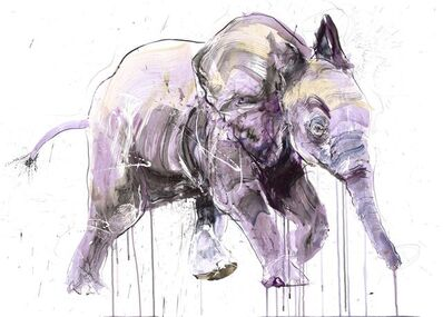 Dave White, 'Young Elephant II', 2020