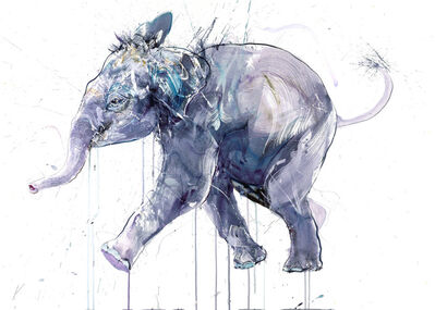 Dave White, 'Young Elephant I DD (small)', 2020