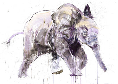 Dave White, 'Young Elephant II DD (small)', 2020