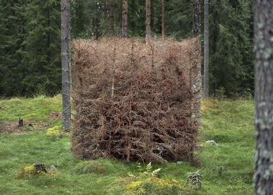 Antti Laitinen, 'Forest (Brown)', 2016