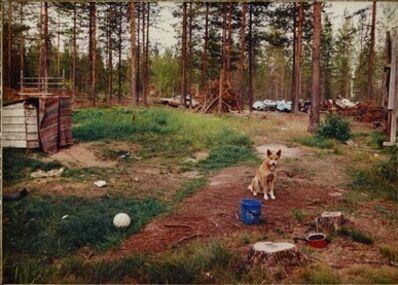 Esko Männikkö, 'Yli-Tornio', 1995