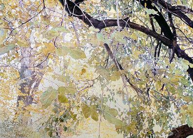 William Nichols, 'Window on Fall', 2019