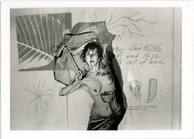 Carolee Schneemann, 'Fresh Blood - A Dream Morphology', 1981-1986