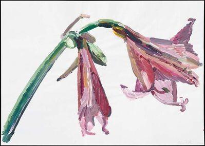 Inge Ellegaard, 'Amaryllis (L6)', 1993