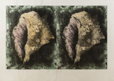 Jim Dine, 'Lost Shells (D'Oench & Feinberg 186)', 1985