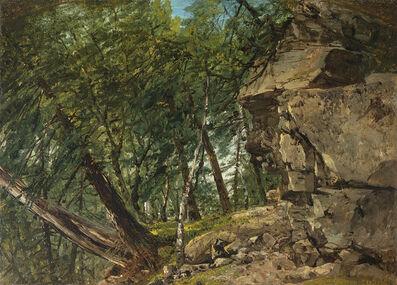 John Frederick Kensett, 'Forest Interior '
