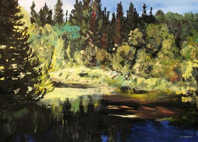 Rebecca Perehudoff, 'Spruce River', 2009