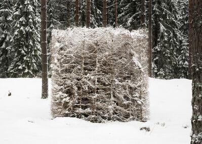 Antti Laitinen, 'Forest (White)', 2016