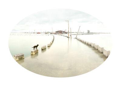 Shun-Fa YANG, '嘉義縣東石鄉白水湖漁塭(二)', 2019
