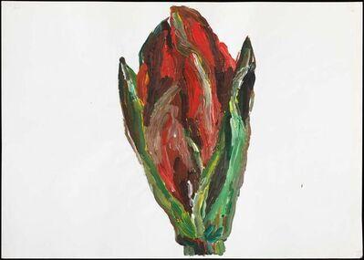 Inge Ellegaard, 'Amaryllis (1)', 1993