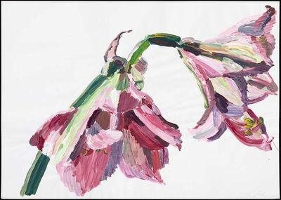 Inge Ellegaard, 'Amaryllis (L4)', 1993