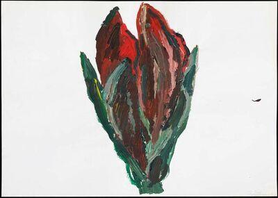 Inge Ellegaard, 'Amaryllis (2)', 1993
