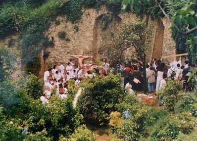 Hermann Nitsch, 'Azione N. 96 – Giardini S. Martino A Napoli', 1996