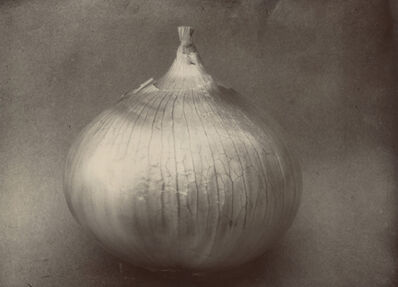 Charles Jones, 'Onion Ailsa Craig, c.1900', c.1900