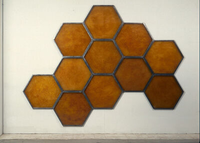 Wolfgang Stiller, 'Honeycomb 1', 1998