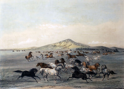 George Catlin, 'Wild Horses at Play', 1844