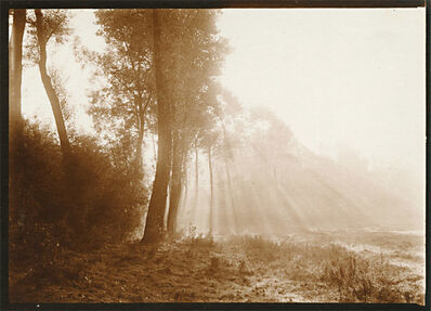 Léonard Misonne, 'Light and Trees', 1920s