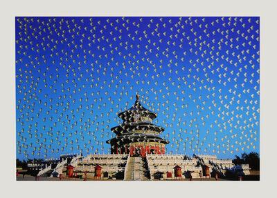 Huang Yan, 'Bird Tiantan No.1', 2006