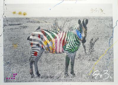 Arno Elias, 'Zebra', 2015