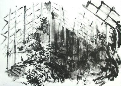 Joel Janowitz, 'Wash Greenhouse (unique)', 2005