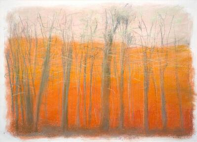 Wolf Kahn, 'Nearby Hills', 2010
