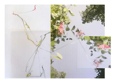 Sandi Haber Fifield, 'Untitled ', 2016