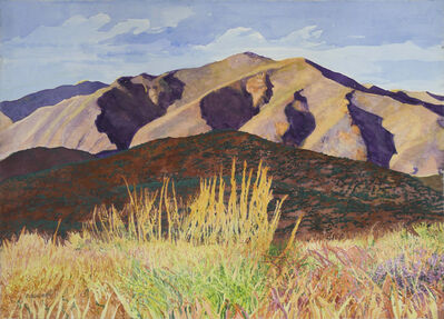 Sheila Gardner, 'Late Day Shadows on the Pioneer Foothills'